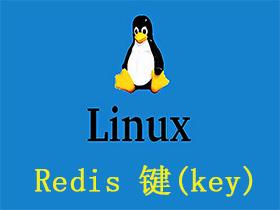 Redis 键(key)