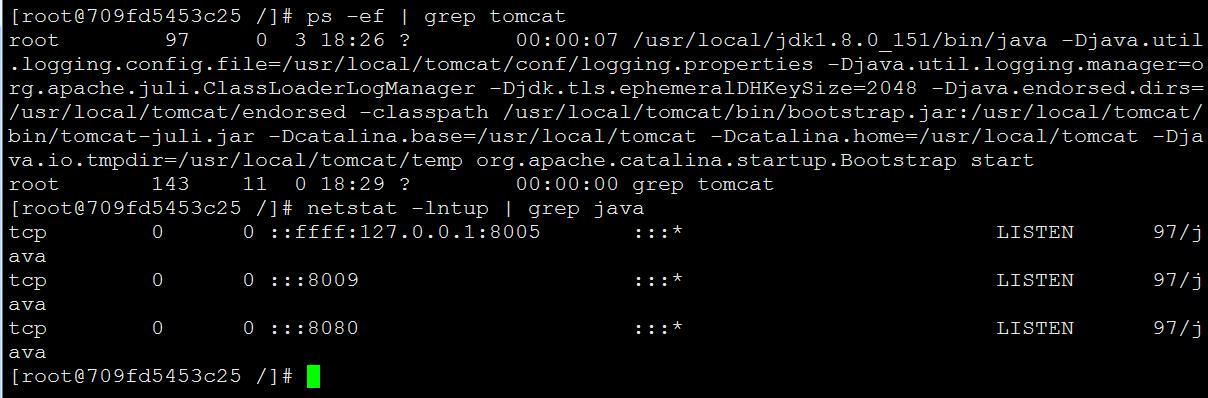 Docker构建Tomcat WEB服务器